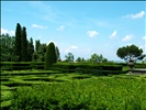 In the parterre