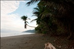 Deserted rugged beach