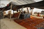 Berber tent 1