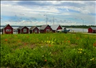 Kappelshamn, northern Gotland