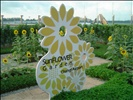 "Changi Airport ""Sun Flower Garden"""