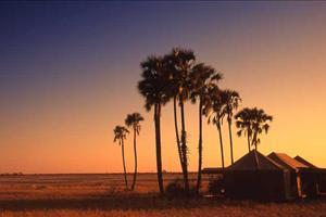 jacks camp at sunset