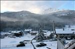 Good Morning Cortina