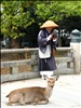 Monk and a deer