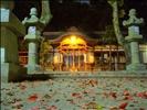 kitsuki jinja shrine