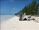 Grand Bahama East End