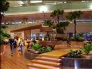 Changi Airport, Terminal 3