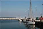 Harbor Quiet