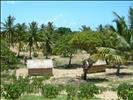 Typical distributed settlements Inhambane South East Africa Mozambique