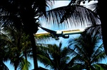 Singapore Airlines coming in for a tropical landing